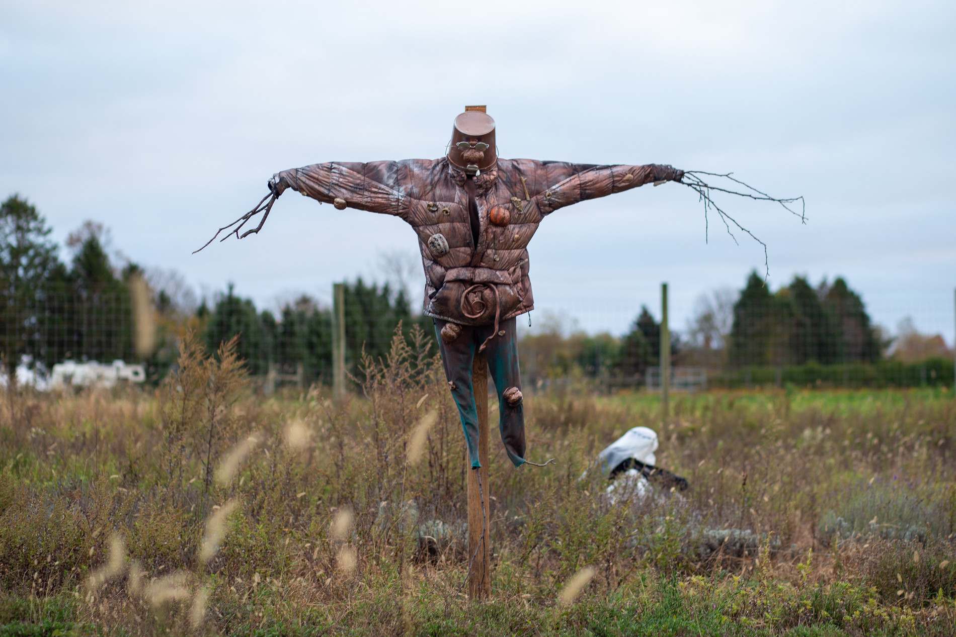 "Betty Roytburd, ""Living Scarecrow"", 2019."